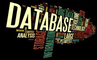 Comprar base de datos de calidad